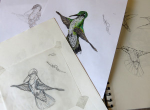 Sketches by Tiffany Miller Russell in preparation for paper sculpture